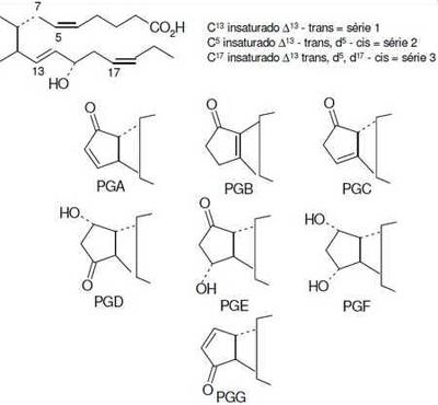 Nomenclatura das Prostaglandinas.