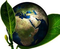 Manifesto Ecológico