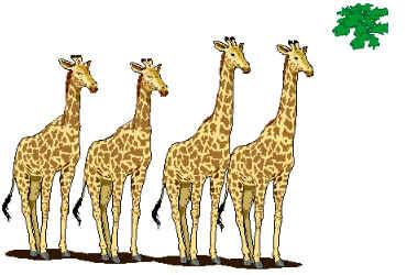 Teorias da Evolução