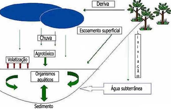 Agrotóxicos em Meios Aquáticos