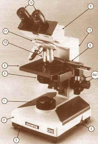 Microscópio Composto