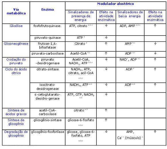 Regulação Metabólica