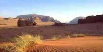 Desertos e Regiões Áridas