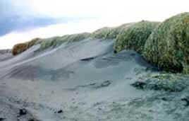 Erosão Eólica