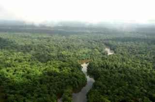 Parque Nacional de Pau-Brasil