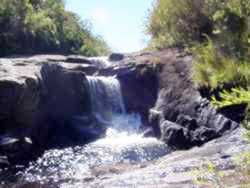 Parque Nacional de Caparaó/MG