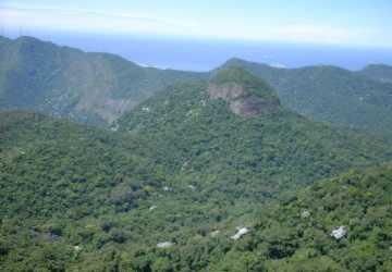 Vista do Pico da Tijuca - Foto: Alexandre Almeida - Biólogo