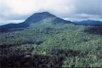 Parque Nacional do Monte Pascoal