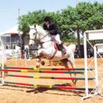 Cavalo2