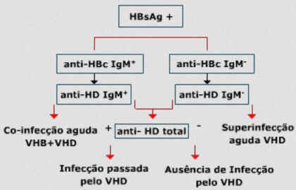 Hepatite D