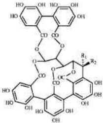 Química do Vinho
