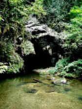 Cavernas da Mata Atlântica