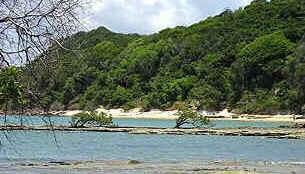 Costa dos Corais