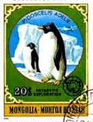 Fauna e Flora da Antártida