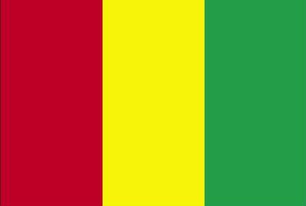 Bandeira da Guiné