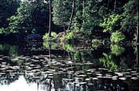 Terra de landes, florestas e lagos, a Sologne é uma região de caça e pesca excepcional.