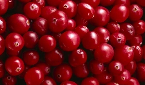Fitoterápicos: Cranberry