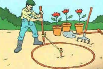 Dia do Jardineiro