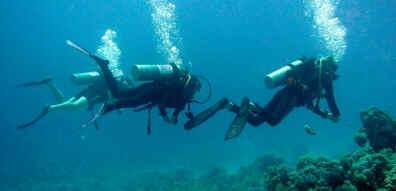 Mergulho em Ilhabela