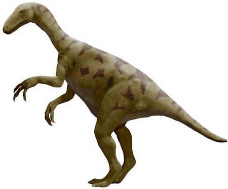 Alxassauro