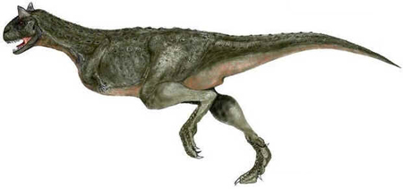 Carnotauro