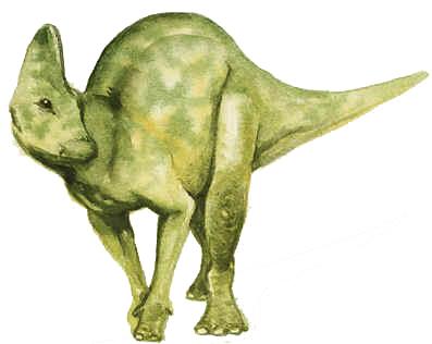 Hypacrossauro
