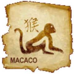 Macaco (Hou)