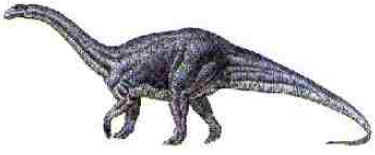 Melanorossauro