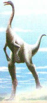 Ornitomimo