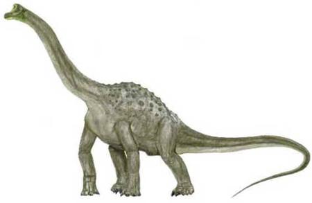 Pelorossauro