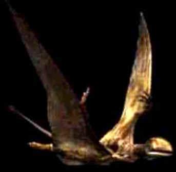 Peteinossauro