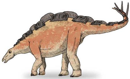 Wuerhossauro