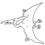 dinossauros-28