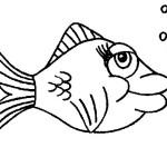 peixe-49