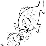 peixe-53