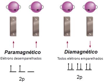 Paramagnético e Diamagnético