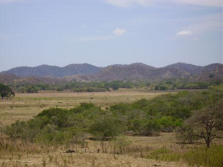 Campos do Sul