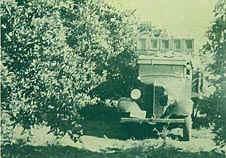 fazenda-citra-58