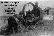fazenda-ibicaba-4