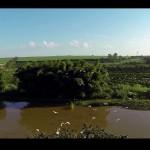 fazenda-quilombo-limeira-10