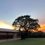fazenda-quilombo-limeira-2