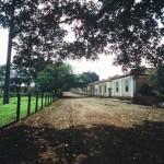 fazenda-santa-gertrudes-12