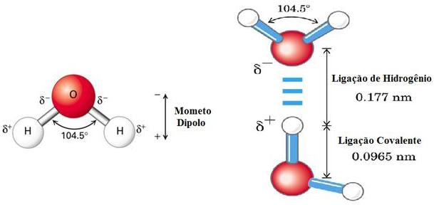 Ligação de Hidrogênio