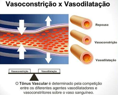 Diferença de Vasoconstrição e Vasodilatação