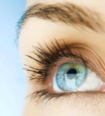 Glândula Lacrimal