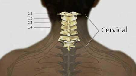 Região Cervical