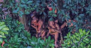 Índios no Brasil