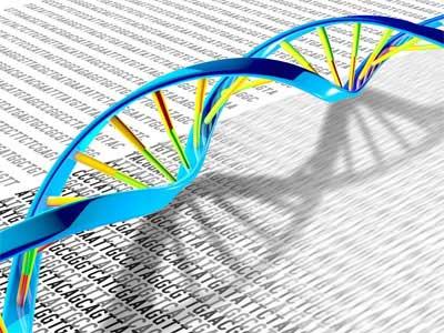 Replicação do ADN