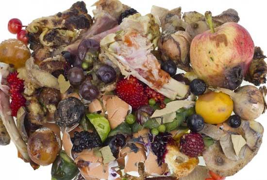 Biodegradabilidade