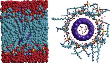 Dinâmica molecular